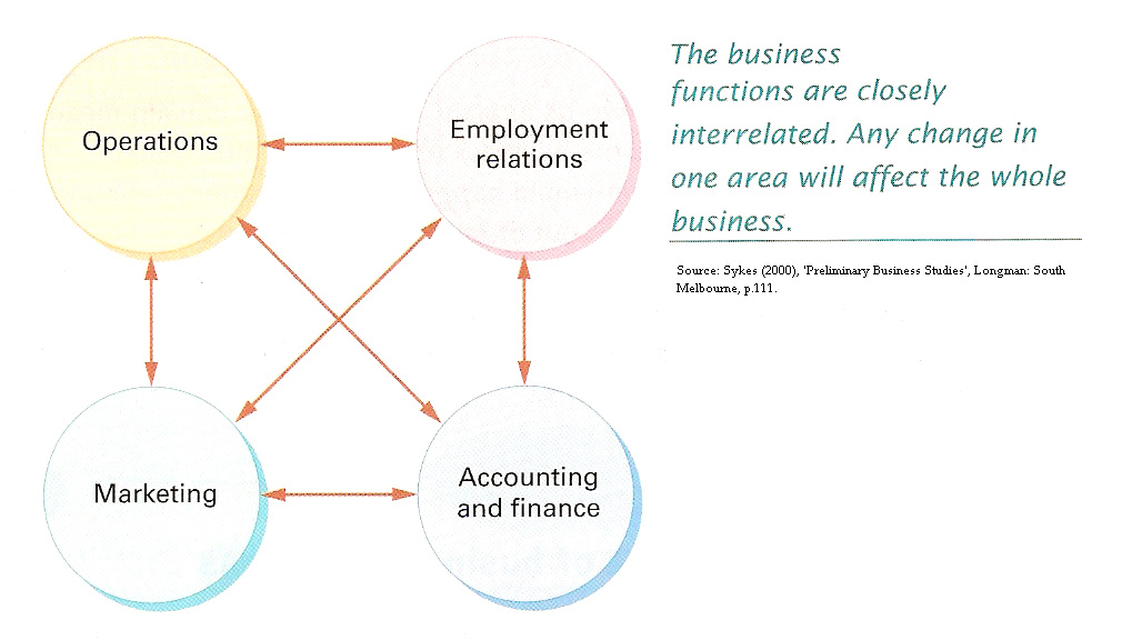 key functions of buisness Business analysts are hired by companies to evaluate the organization's processes and point out places where the company can improve performance as a business analyst, you may work for a company as a full-time or contract employee in this position, you are required to develop a strategy that the.